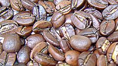 7-kings-blue-mountain-coffee-roasted.jpg